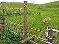 Wolds Way Stile - geograph.org.uk - 285429.jpg
