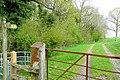 Wye Valley Walk - geograph.org.uk - 1287719.jpg