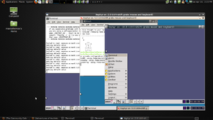 Three recursive levels of nested Xephyr sessions, running on Linux Mint