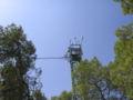 Yatir Forest, Israel no.2.jpg