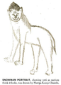 Yeti Snowman portrait.png