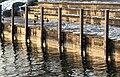 Zürich - Seefeld - Hafen Riesbach IMG 8564 ShiftN.jpg