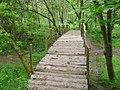 Zaječarski park.jpg