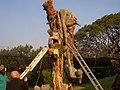 Zambian Premier Art.jpg