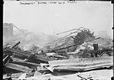 """""""Dreamland"""" burned, Coney Island, 5-27-11 LCCN2014689236.jpg"""