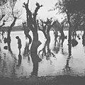 """""""Marshes - 2"""" (1968). (6099006695).jpg"""