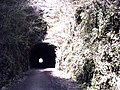 'Strawberry Line' south entrance to Shute Shelve Hill tunnel - geograph.org.uk - 291375.jpg