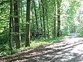 (PL) Polska - Warmia - Las Miejski w Olsztynie - The City Forest in Olsztyn (28.VIII.2012) - panoramio (38).jpg