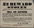 £2 Rewards Stolen dog 1864.jpg