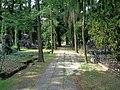 Łódź-path at Old Cemetery.jpg