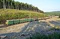 ВЛ10К-949, Russia, Chelyabinsk region, Urzhumka - Khrebet stretch (Trainpix 168890).jpg