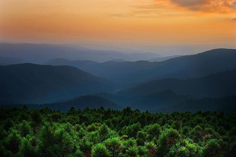 File:Вечір в горах. Чорногорський хребет. Карпати.jpg