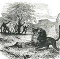 Вокруг Света-Livingstone-2.jpg