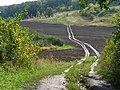 Дорога между селами Беспаловка и Жадановка в заказнике Гомольшанская лесная дача.jpg