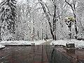 Маріїнський парк у місті Києві.jpg