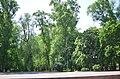 Наводницкий парк в Киеве. Фото 63.jpg