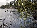 Озерки. Верхнее озеро. Май - panoramio.jpg