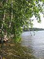 Остров на Увильдах - panoramio.jpg