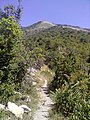 Путь к горе - panoramio.jpg