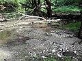Ручей в озеро.JPG