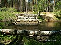 Р Волчья Разрушенный мост - panoramio - Dmitriy Alekseenkoff.jpg
