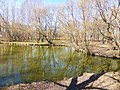 Участок правобережной части долины реки Яузы с водоемом 05.jpg