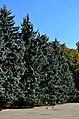 Центральній міський парк Вінниці восени.jpg