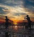 الدراجات والبحر.jpg