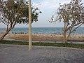 كرنيش الخبر 2013 - panoramio (2).jpg