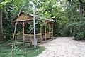 ქუთაისის ბოტანიკური ბაღი 06.jpg