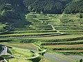 大垪和西の棚田 - panoramio.jpg