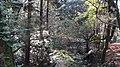 奈良公园 - panoramio (1).jpg