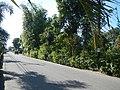 02936jfSabang Rice Fields Creeks San Rafael Roads Bulacanfvf 23.JPG