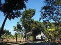 09733jfMaharlika Highway Good Shepherd Chapel San Ildefonso Bulacanfvf 13.JPG