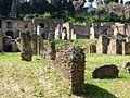 09753 - Rome - Roman Forum (3504239413).jpg