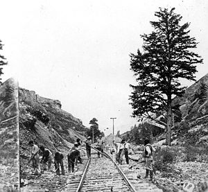 Weber Canyon - 1000 Mile Tree in 1869