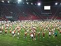 15. sokolský slet na stadionu Eden v roce 2012 (56).JPG