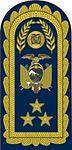 16 - FAE - Pala de Teniente General - Lieutenant General.jpg