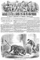 1866 Bow Bells v5 September 11.png
