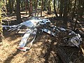 1947 Snell crash wreckage 09 - Fremont NF Oregon.jpg