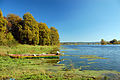 2010-10-10-oderpruch-pl-by-RalfR-02.jpg