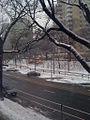2010 BeaconSt Brookline 4357546255.jpg