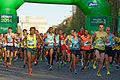 2014 Paris Marathon t084600.jpg