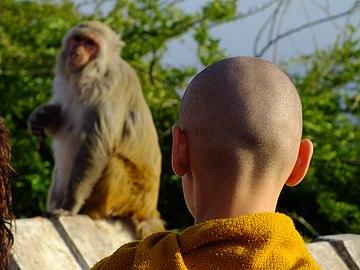 2015-03-08 Swayambhunath,Katmandu,Nepal,சுயம்புநாதர் கோயில்,スワヤンブナート DSCF4269.jpg