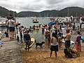 2019 Scotland Island Pittwater NSW Christmas Day pooch race 8.jpg