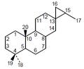 3,16-Cicloabietano - Numeración.png
