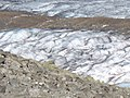 3628 - Aletschgletscher viewed from Eggishorn.JPG