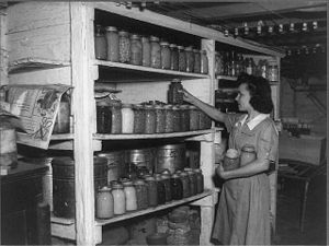 4-H - 4-H Club member storing food she canned from her garden, Rockbridge County, Virginia, ca. 1942