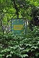 46-101-5039 Lviv Dybovski Arboretum RB 18.jpg