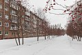 49314235001 Novosibirsk, January 2020.jpg